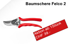 Baumscher Aktion